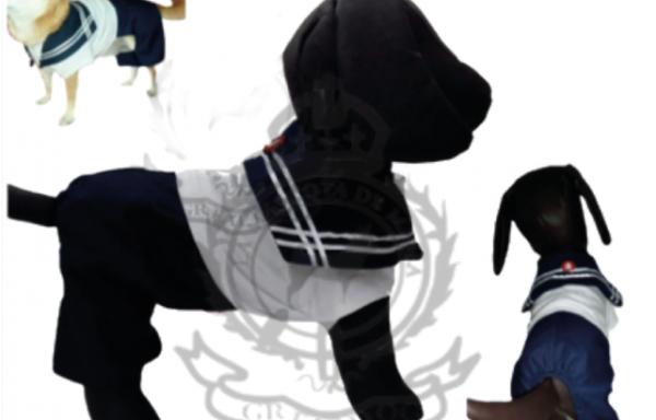 Conjunto marinero de pantalón