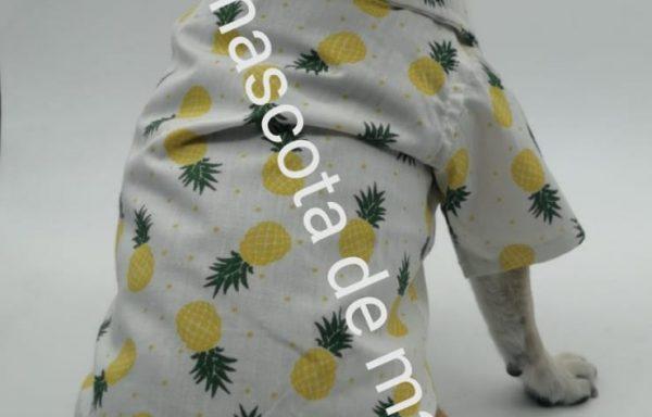 Camisa de piñas