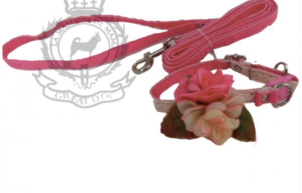 Correa y collar Flor de seda