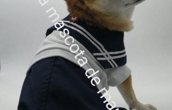 Conjunto marinero